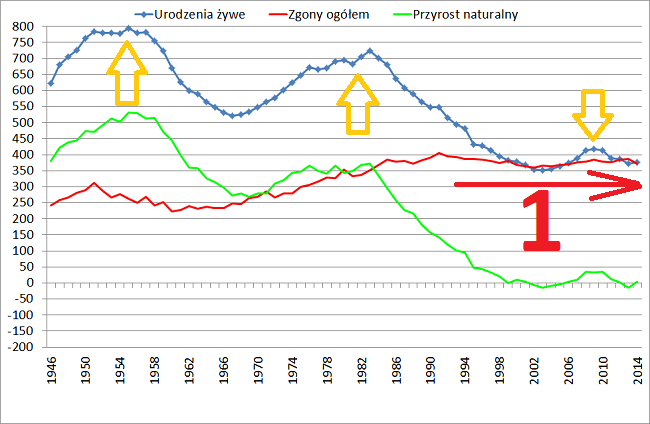 Dane GUS urodzenia i zgony w Polsce w 2014 roku